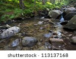 flowing mountain stream with... | Shutterstock . vector #113137168