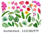 vector set tropical leaves and... | Shutterstock .eps vector #1131382979