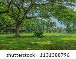 singapore   july 8 2018  pasir... | Shutterstock . vector #1131388796