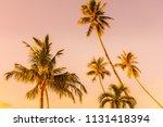 beautiful outdoor blue sky with ... | Shutterstock . vector #1131418394
