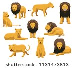 Lion And Lioness Cartoon Vecto...