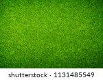 green grass background   Shutterstock . vector #1131485549