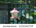 chickadee titmouse songbird... | Shutterstock . vector #1131542729