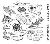 hand drawn herbs  spices and... | Shutterstock .eps vector #1131621956
