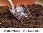 garden shovel stuck in the... | Shutterstock . vector #1131637103