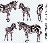 seamless pattern  background ... | Shutterstock .eps vector #1131723263