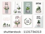 spring floral cards with flower ... | Shutterstock .eps vector #1131736313