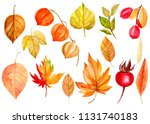 watercolor illustration  hand... | Shutterstock . vector #1131740183