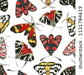 seamless pattern with painted...   Shutterstock . vector #1131784619