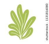 green algae bush isolated... | Shutterstock .eps vector #1131816080