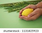 jewish festival of sukkot....   Shutterstock . vector #1131825923