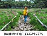 asian woman travel nature.... | Shutterstock . vector #1131952370