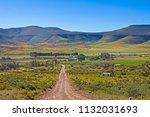 wildflowers in biedouw valley...   Shutterstock . vector #1132031693