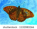 butterfly argynnis paphia.   | Shutterstock . vector #1132083266