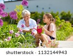 gardening  family and people... | Shutterstock . vector #1132144943