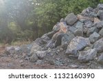 close up many large piles of... | Shutterstock . vector #1132160390