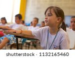 boituva sao paulo brazil   june ... | Shutterstock . vector #1132165460