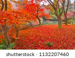 sakyoku ku  kyoto city in late... | Shutterstock . vector #1132207460