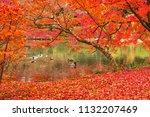 sakyoku ku  kyoto city in late... | Shutterstock . vector #1132207469