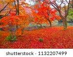 sakyoku ku  kyoto city in late... | Shutterstock . vector #1132207499