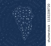 la palma network  constellation ... | Shutterstock .eps vector #1132208720
