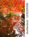 sakyo ku  kyoto shi late autumn ... | Shutterstock . vector #1132209200