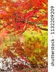 sakyo ku  kyoto shi late autumn ... | Shutterstock . vector #1132209209