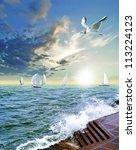 sailing regatta | Shutterstock . vector #113224123