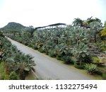 chonburi  thailand   june 17 ... | Shutterstock . vector #1132275494