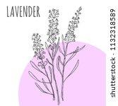 lavender vector sketch...   Shutterstock .eps vector #1132318589