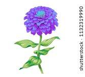 beautiful purple flower zinnia... | Shutterstock .eps vector #1132319990