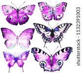 beautiful butterfly watercolor  ... | Shutterstock . vector #1132391003