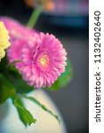 view of full blooming pink...   Shutterstock . vector #1132402640