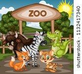 vector illustration of a zoo... | Shutterstock .eps vector #1132417340
