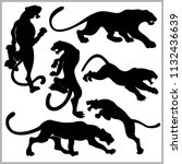 set of wildcats silhouettes. | Shutterstock .eps vector #1132436639