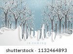 merry christmas greetings card... | Shutterstock .eps vector #1132464893