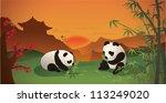Pandas Having Dinner At Sunset