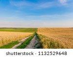 green field and beautiful sunset | Shutterstock . vector #1132529648