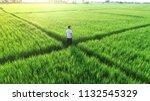 man walking in a rice field.... | Shutterstock . vector #1132545329
