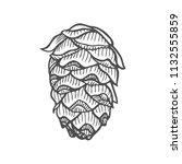 vector illustration of pinecone ... | Shutterstock .eps vector #1132555859