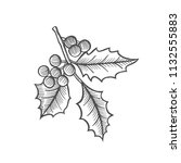 ink sketch of mistletoe branch... | Shutterstock .eps vector #1132555883