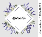 purple green lavender flowers... | Shutterstock .eps vector #1132618229