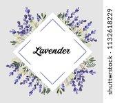 purple green lavender flowers... | Shutterstock .eps vector #1132618229