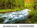 deep forest wild river flowing... | Shutterstock . vector #1132656584