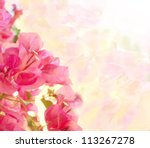 beautiful abstract floral... | Shutterstock . vector #113267278