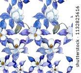 blue aquilegia flower. floral... | Shutterstock . vector #1132825616