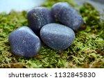 beautiful  charming purple... | Shutterstock . vector #1132845830