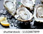 fresh raw oysters with ice on... | Shutterstock . vector #1132887899