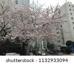 apr 3  2015  tokyo japan  pink...   Shutterstock . vector #1132933094