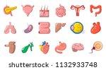 human internal organ icon set.... | Shutterstock . vector #1132933748